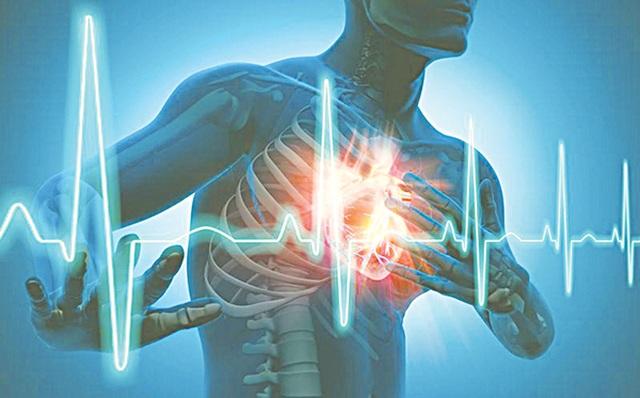 Rối loạn nhịp tim và những cái chết bất ngờ - 1