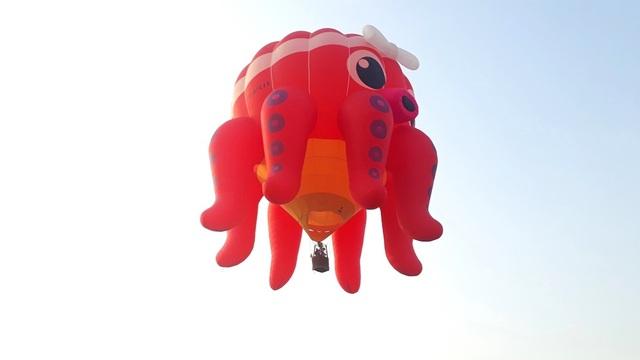 Hào hứng với lễ hội khinh khí cầu quốc tế - 8