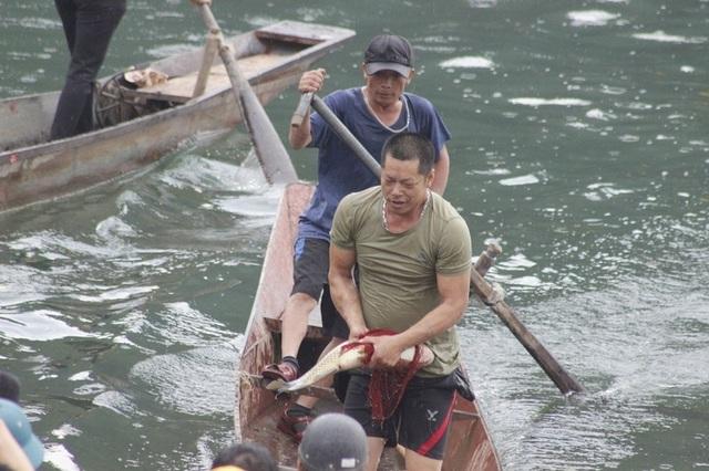 Rộn ràng Hội thi cá trắm và đua thuyền sông Son - 5