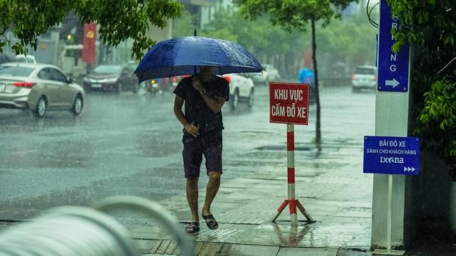 Sài Gòn bất ngờ đón trận mưa vàng trong ngày nghỉ lễ - 4