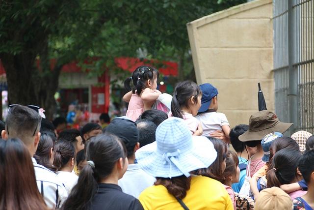 Toát mồ hôi, chen nhau trong công viên Thủ Lệ dịp nghỉ lễ - 8