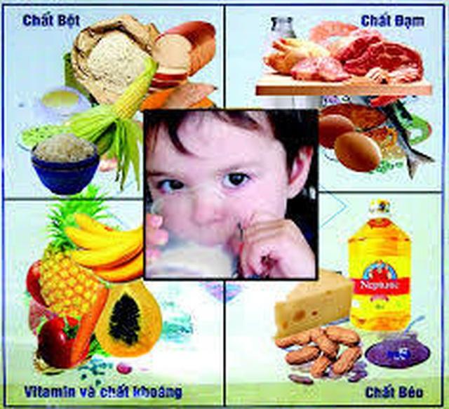 Chất dinh dưỡng vi lượng và sức khỏe - 3