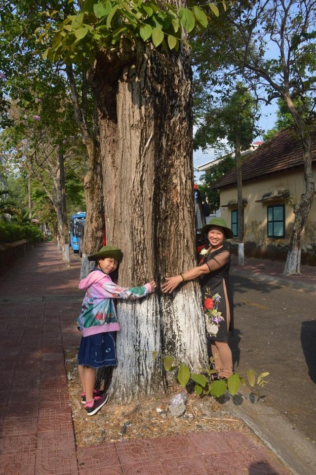 Chiêm ngưỡng những cây di sản Việt Nam ở Côn Đảo - 7