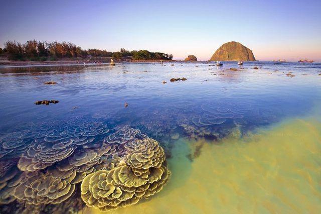 Phú Yên đón hơn 42 nghìn lượt khách trong dịp nghỉ lễ - 1