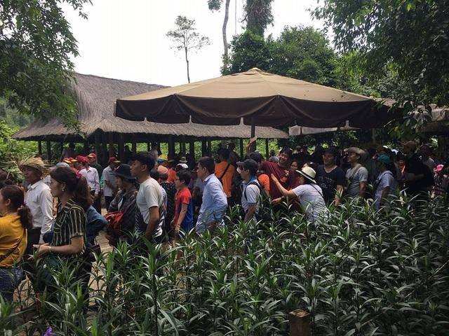 Quảng Bình đón 250 ngàn lượt khách trong 5 ngày nghỉ Lễ 30/4 – 1/5 - 1