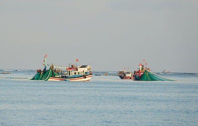 Xử lý nghiêm các tàu cá khai thác hải sản bất hợp pháp - 1