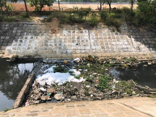 Dead fish, garbage is full of water channels in Danang - 3