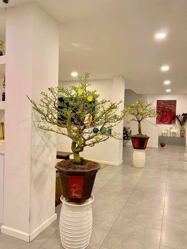 Ngắm căn biệt thự sang trọng ngập tràn hoa lá của Hồ Ngọc Hà - 9