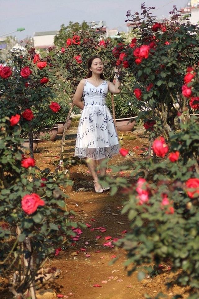 Bỏ việc nhà băng về trồng hoa hồng, 9X Lai Châu kiếm bộn tiền - 1