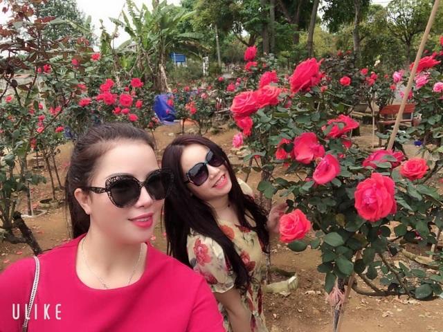 Bỏ việc nhà băng về trồng hoa hồng, 9X Lai Châu kiếm bộn tiền - 4