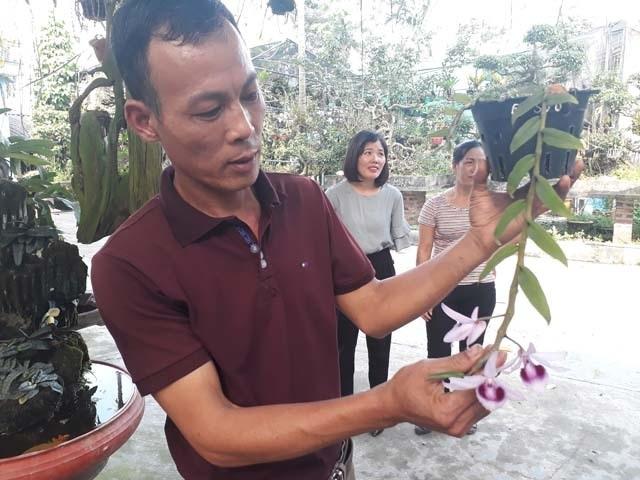 Lạ Thái Nguyên: Vườn lan nhiều loại siêu độc, giá cả chục triệu 1cm - 1