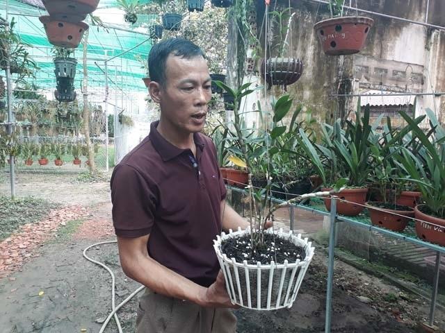 Lạ Thái Nguyên: Vườn lan nhiều loại siêu độc, giá cả chục triệu 1cm - 2
