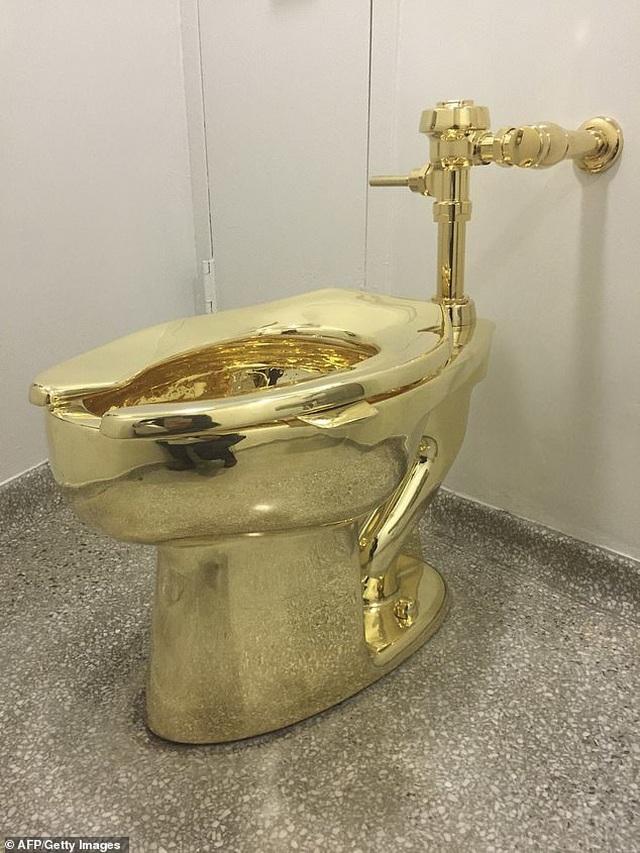 Lắp đặt toilet dát vàng 18 kara để công chúng sử dụng - 3