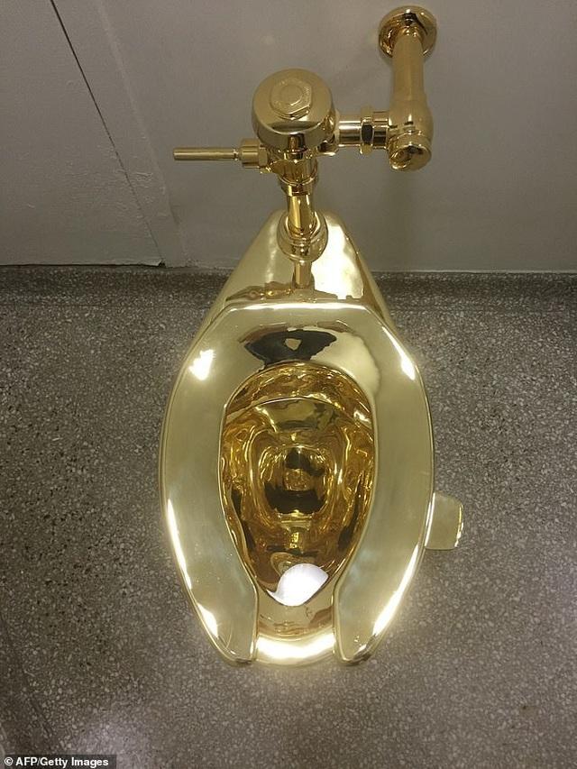 Lắp đặt toilet dát vàng 18 kara để công chúng sử dụng - 4