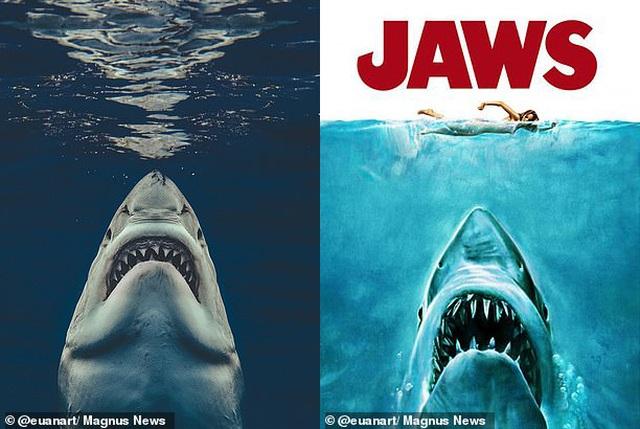 """Bức ảnh gợi nhớ sự kinh hoàng của """"Hàm cá mập"""" - 1"""