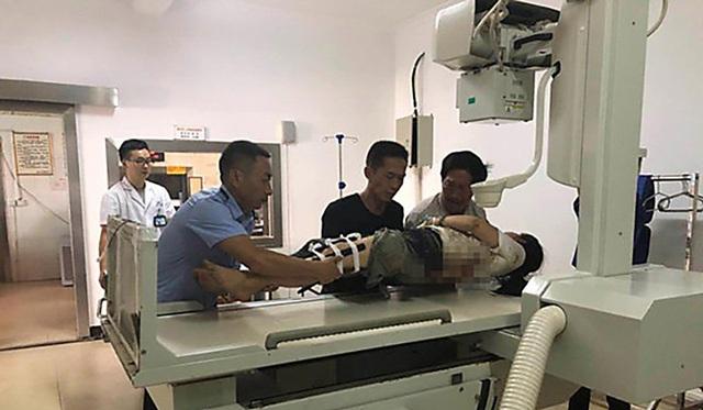 Du khách bị voi húc trọng thương khi cho con đi tiểu ở ven rừng - 3