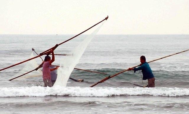 Săn lộc biển với ngư cụ tự chế, ngư dân bỏ túi tiền triệu mỗi ngày - 1
