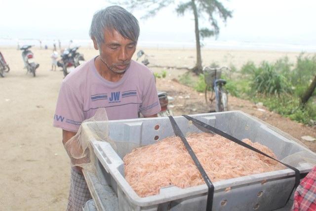 Săn lộc biển với ngư cụ tự chế, ngư dân bỏ túi tiền triệu mỗi ngày - 5