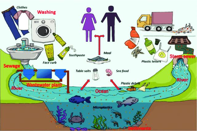 Ecobrick: Cách xử lý rác nhựa khả thi - 2