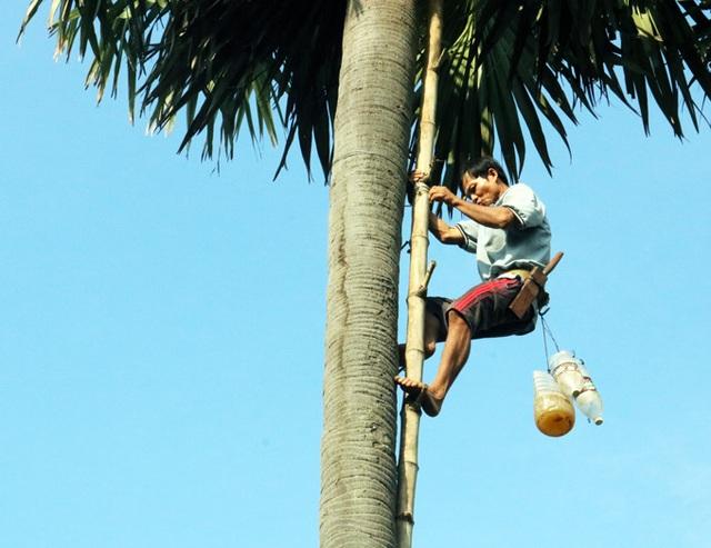 Kiếm tiền triệu từ nghề trèo cây kỳ lạ 20 năm mới ra trái ở An Giang - 6