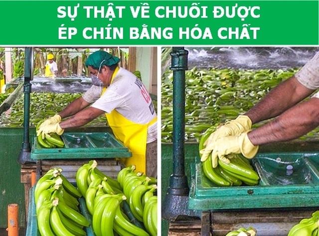 Những băn khoăn thường gặp của gia đình Việt về thực phẩm  - 3