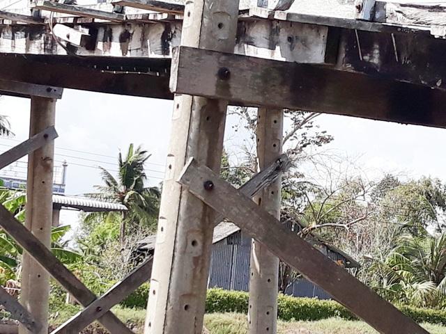 Chênh vênh cầu ván vùng kháng chiến U Minh - Cà Mau - 11
