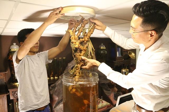 Cận cảnh củ sâm Ngọc Linh khủng giá 2 tỷ đồng ở Hà Nội - 1