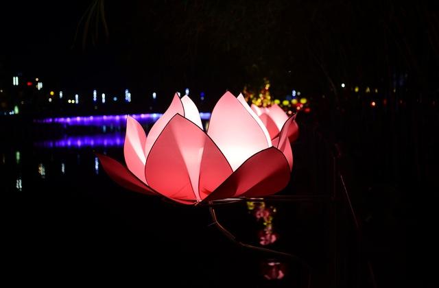 Hoa đăng lung linh trên kênh Nhiêu Lộc chào đón lễ Phật đản - 6