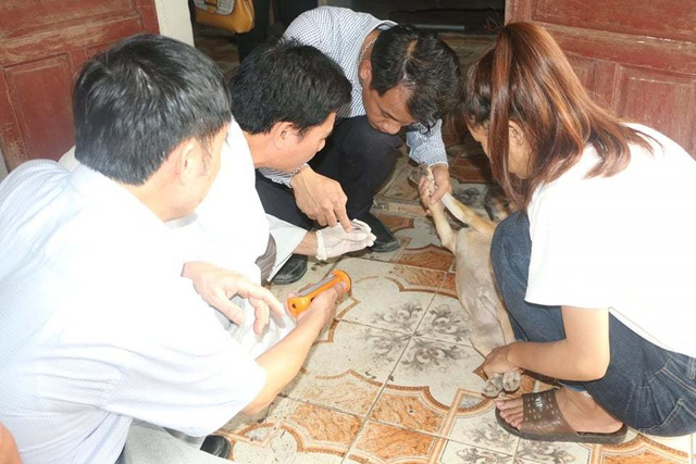Vụ 3 người tử vong ở Hà Tĩnh: Gửi mẫu nghi tác nhân gây bệnh ra Viện sốt rét - 2