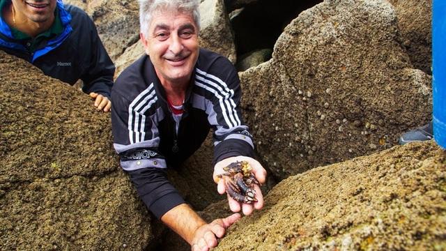 Loại ốc biển xấu xí 3 triệu đồng/con, nhà giàu muốn mua không có - 4