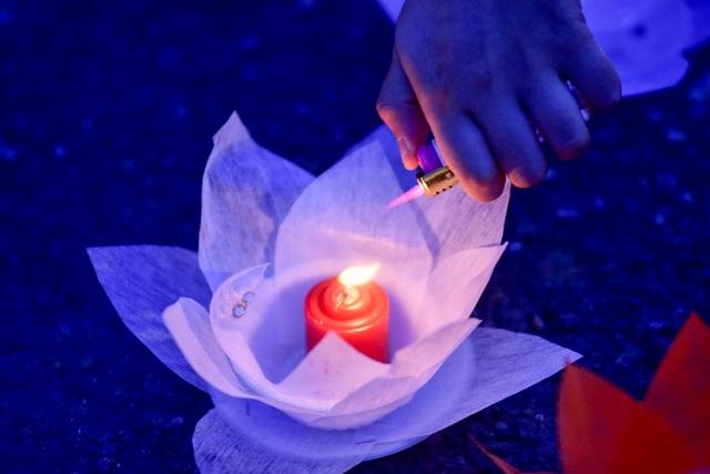 Lễ hội hoa đăng cầu nguyện hòa bình thế giới tại chùa Tam Chúc - 20