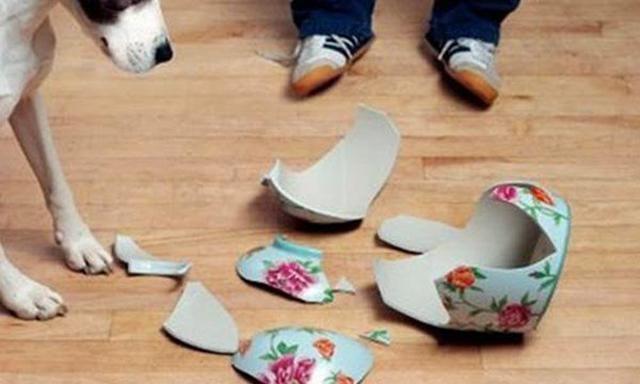 Con gái làm vỡ bình hoa, vợ vô tình phát hiện ra bí mật của chồng sau 13 năm! - 1
