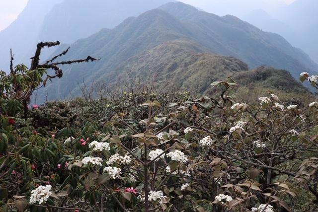 Kinh nghiệm chinh phục địa danh hiểm trở bậc nhất Việt Nam - 18