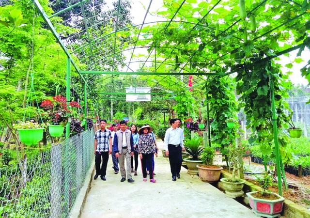 Hà Tĩnh tổ chức Lễ Báo công với Bác Hồ - 3