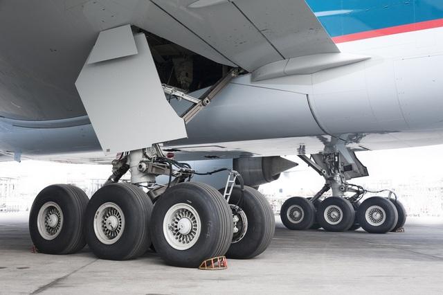 """Tóm gọn hành khách trốn dưới càng máy bay định """"đi ké"""" miễn phí - 1"""