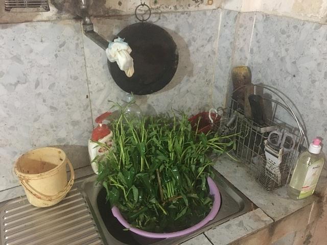 Hãi hùng sinh vật nghi là đỉa ngoe nguẩy trong nước máy tại Quảng Bình - 3