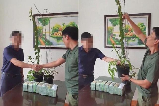 2 chậu lan 3,5 tỷ đồng: Cú áp phe có mục đích của nhóm người Hà Tĩnh? - 1