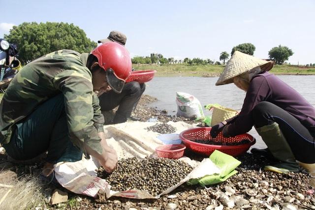 Đổ xô đi đãi hến mùa nước cạn ở hồ Ea Kao - 4