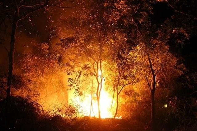 Cháy rừng, nhiều nhà dân sơ tán, hàng trăm người dập lửa trong đêm - 2