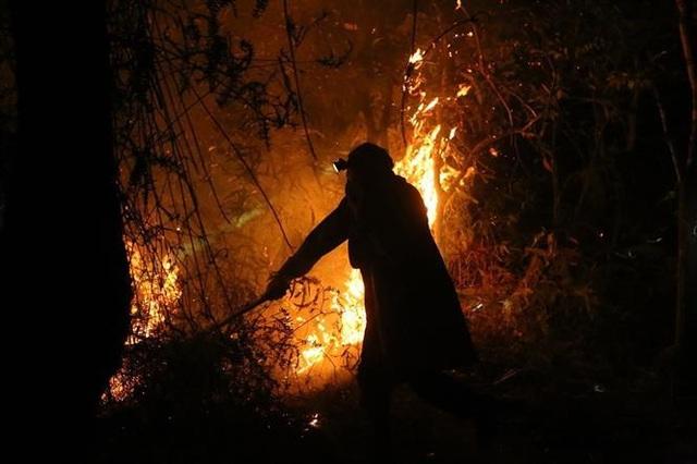 Cháy rừng, nhiều nhà dân sơ tán, hàng trăm người dập lửa trong đêm - 3