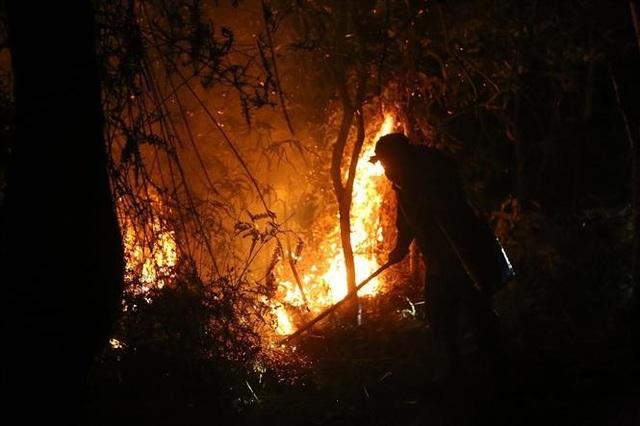 Cháy rừng, nhiều nhà dân sơ tán, hàng trăm người dập lửa trong đêm - 1