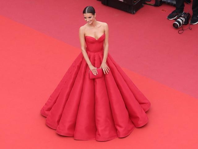 Những người đẹp thu hút mọi ánh nhìn trên thảm đỏ Cannes - 12