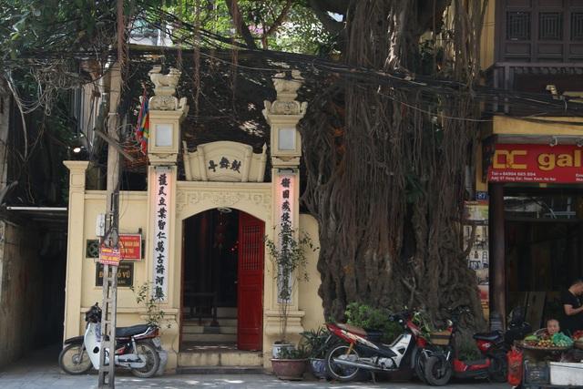 """Cây đa cổ thụ với bộ rễ """"khổng lồ"""" có tuổi đời hàng trăm năm ở Đình Cổ Vũ  - 9"""