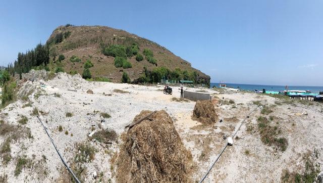 Chủ tịch UBND huyện Lý Sơn: 26.000m2 đất bỏ hoang sẽ được phân lô đấu giá làm dịch vụ - 1