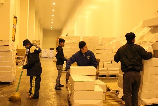 """TPHCM: 13 triệu dân nguy cơ """"đói"""" thịt trong vòng vây dịch tả lợn - 5"""