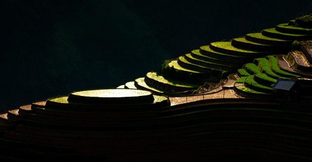 Ruộng bậc thang Mù Cang Chải mùa nước đổ qua góc máy của nghệ sỹ trẻ - 11