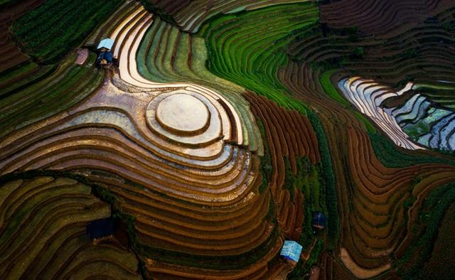 Ruộng bậc thang Mù Cang Chải mùa nước đổ qua góc máy của nghệ sỹ trẻ - 3