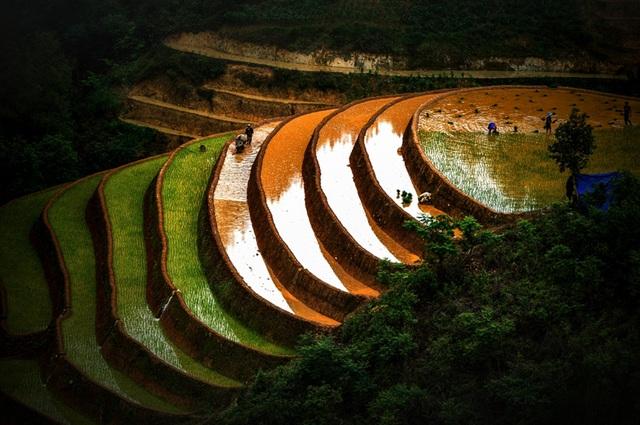 Ruộng bậc thang Mù Cang Chải mùa nước đổ qua góc máy của nghệ sỹ trẻ - 7