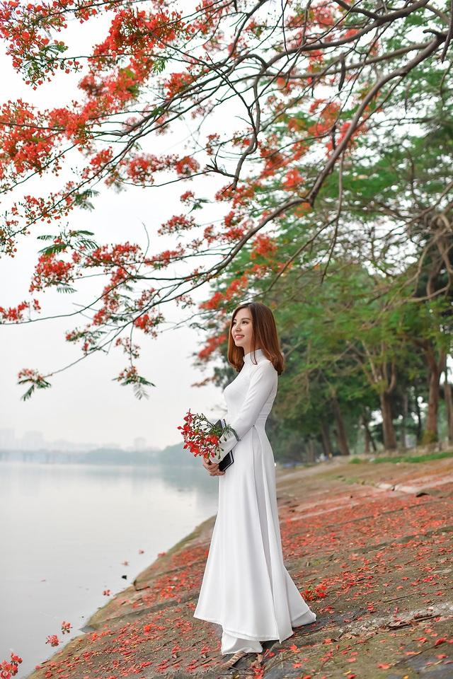 Thiếu nữ bâng khuâng kỷ niệm dưới tán phượng đỏ rực ven hồ - 3