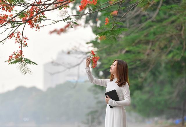 Thiếu nữ bâng khuâng kỷ niệm dưới tán phượng đỏ rực ven hồ - 14